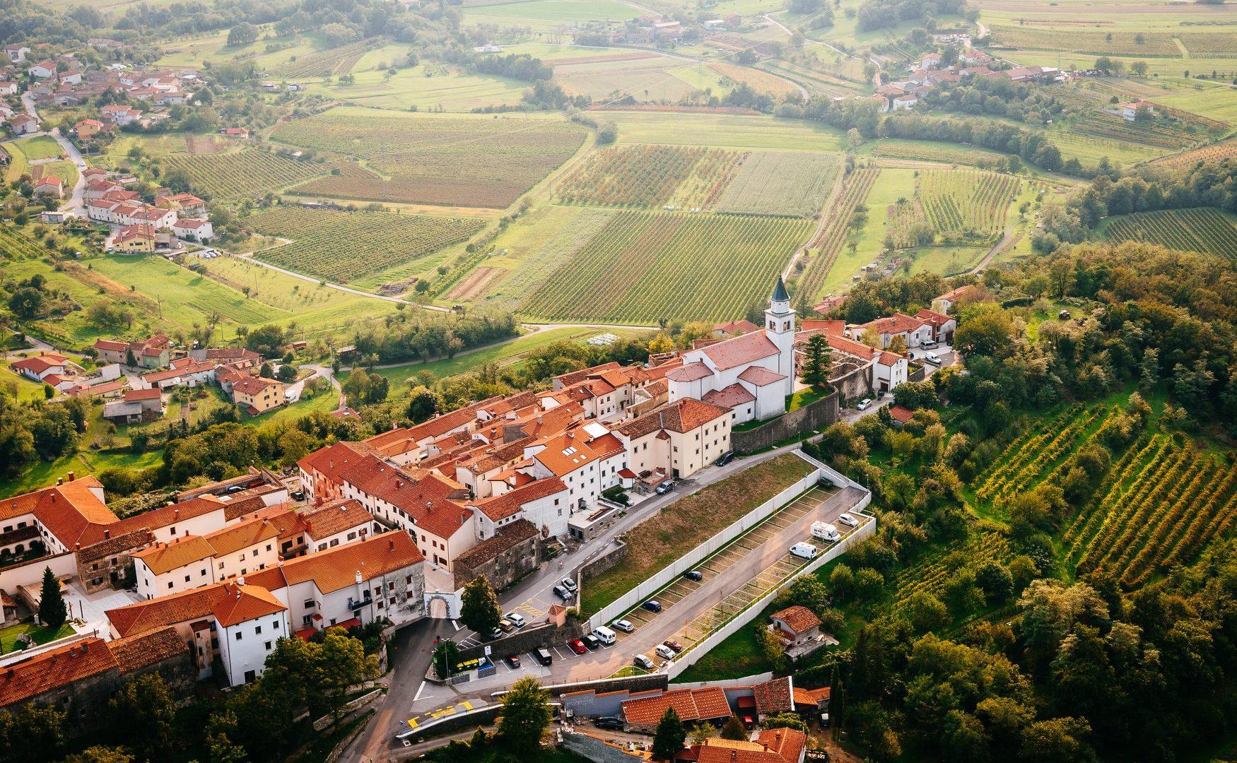 Zelen wijnfestival dit weekend