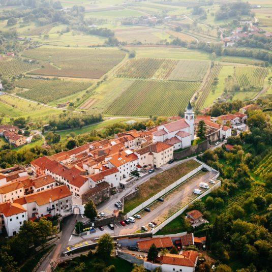 FINOVINO Sloveense wijnen - Vipavski Križ