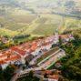 FINOVINO Sloveense wijnen – Vipavski Križ