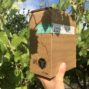 FINOVINO Sloveense wijnen –  Vegan rose in bag-in-box