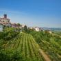 Het Sloveense dorpje Šmartno omringd door wijngaarden