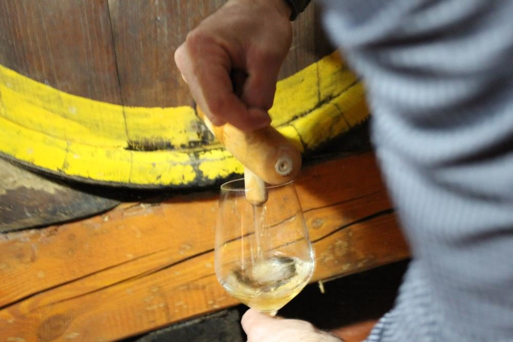 De Sloveense wijn komt naar je toe deze zomer!